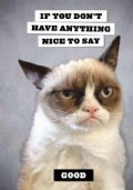 Grumpy Cat Flexi Journal: If You Don't Have Anything Nice to Say, Good (Notebook / blank book)