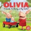 A Guide to Being a Big Sister (Paperback)