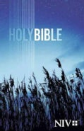 Holy Bible: New International Version (Paperback)