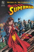 World Without a Superman (Paperback)