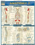 Anatomy 2 (Cards)