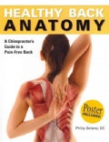 Healthy Back Anatomy: A Chiropractor&#39;s Guide to a Pain-free Back