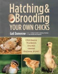 Hatching & Brooding Your Own Chicks: Chickens, Turkeys, Ducks, Geese, Guinea Fowl (Paperback)