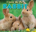 Rabbit (Hardcover)