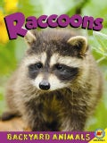 Raccoons (Paperback)