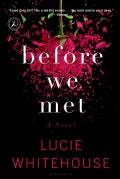 Before We Met (Paperback)
