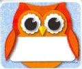 Colorful Owl Name Tags (Novelty book)