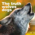 The Truth About Wolves & Dogs: Dispelling the Myths of Dog Training (Paperback)