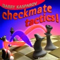 Checkmate Tactics (Hardcover)