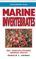 A PocketExpert Guide: Marine Invertebrates : 500+ Essential-to-Know Aquarium species (Paperback)