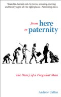 From Here to Paternity: The Diary of a Pregnant Man (Paperback)