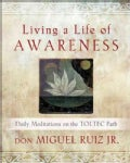 Living a Life of Awareness (Paperback)