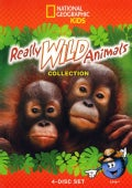 Really Wild Animals Collection (DVD)