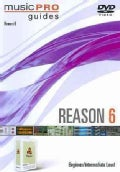 Reason 6: Beginner/Intermediate Levels (DVD)