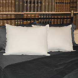 350 Thread Count Silver Protection Antimicrobial Pillow (Set of 2)