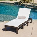 Christopher Knight Home Jamaica Outdoor Chaise Lounge with Cushion