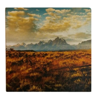 Absorbent Stone Western Range Coasters (Set of 4)