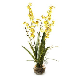 D&W Silks Yellow Orchids with River Grass and Orchid Greenery in Glass Dish