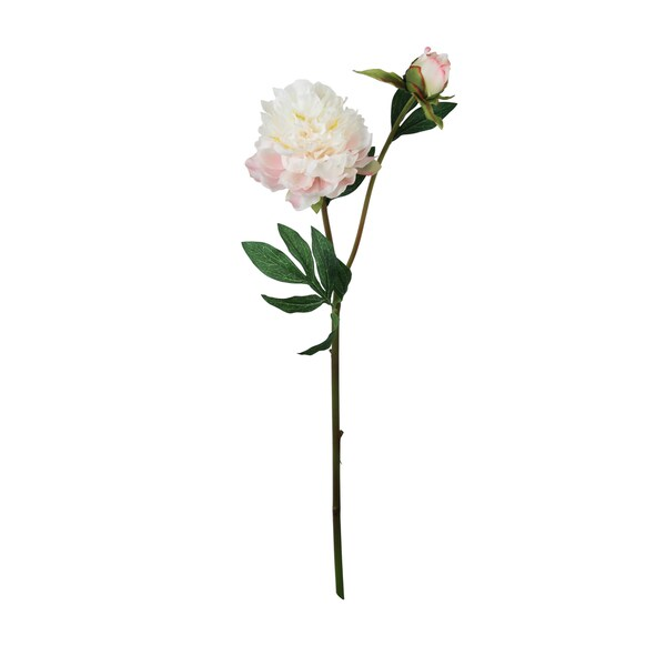 Peony Silk Flower Stem (Set of 12)