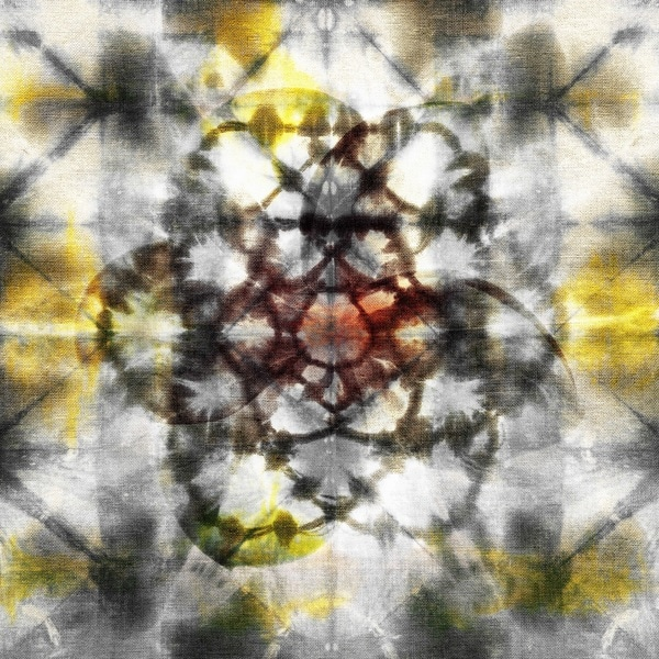 Parvez Taj 'Floral Kaleidoscope' Canvas Art