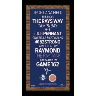 Tampa Bay Rays Subway Sign 9.5x19 Frame w/ auth Dirt from Tropicana Field