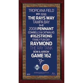 Tampa Bay Rays Subway Sign 16x32 Frame w/ auth Dirt from Tropicana Field