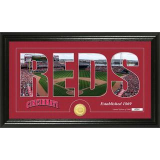 Cincinnati Reds Silhouette Bronze Coin Panoramic Photo Mint
