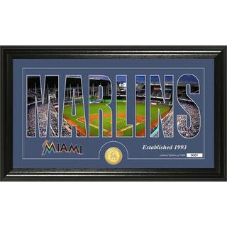 Miami Marlins Silhouette Bronze Coin Panoramic Photo Mint
