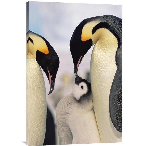 Konrad Wothe 'Emperor Penguin parents with chick, Antarctica' Stretched Canvas Artwork
