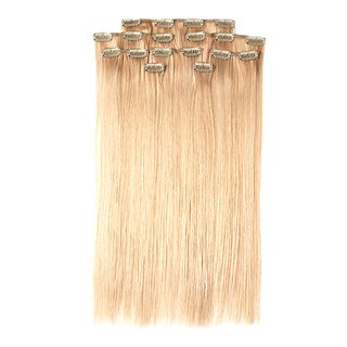 100-percent Organic 18-inch 8-piece Clip-in Hair Extensions (Euro Straight)