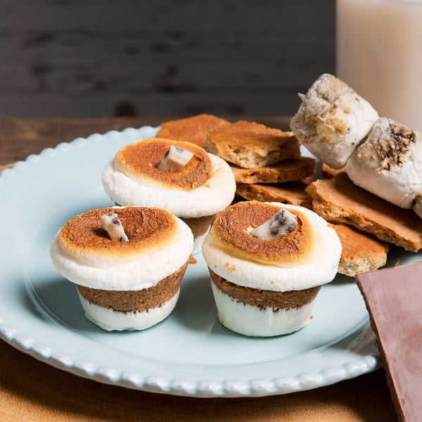 Gotta Have S'more Cookies and Cream S'mores