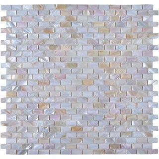Legion Seashell Square Tiles (Pack of 11)