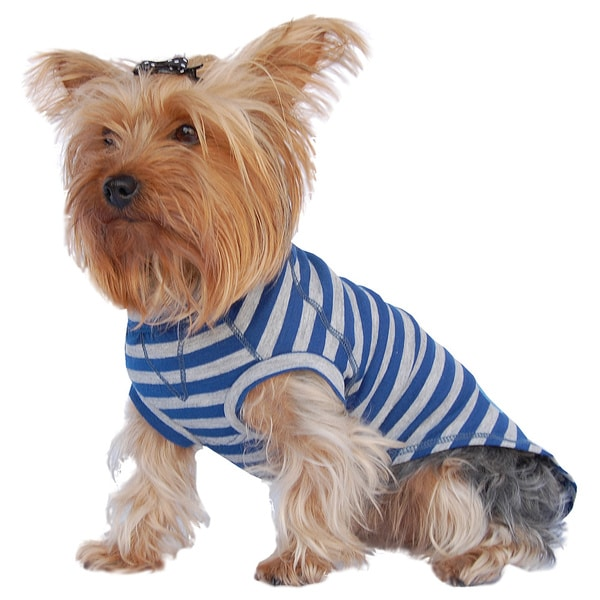 Stripe Raglin Style Pet T-Shirt