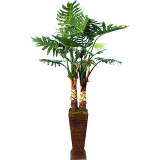 Tall Silk Monstera Tree in Brown Rattan Planter