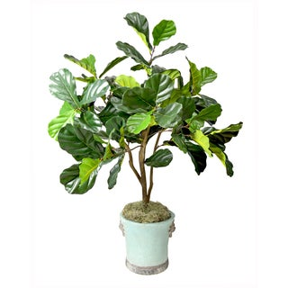 Faux Fiddle Leaf Fig Tree in Aqua Blue Embellished Pot