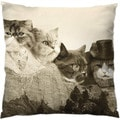 Mount Meowmore Square Throw Pillow