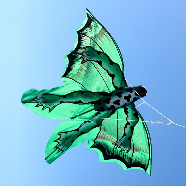 Handcrafted Nylon Bamboo 'Lucky Frog' Kite (Indonesia)