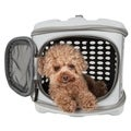 Circular Shelled Perforate Lightweight Collapsible Military Grade Transporter Pet Carrier