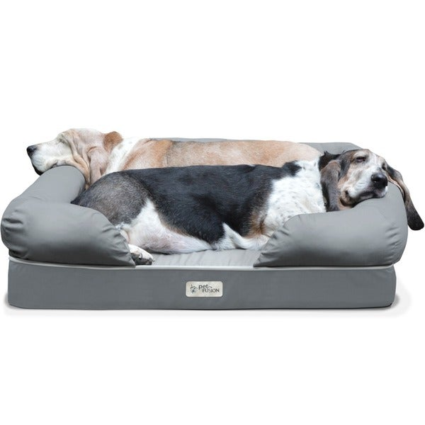 PetFusion Premium Edition Ultimate Dog Lounge and Dog Bed with Solid 4-inch Memory Foam