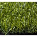 Premium Envylawn Landscaping Synthetic Turf Mat