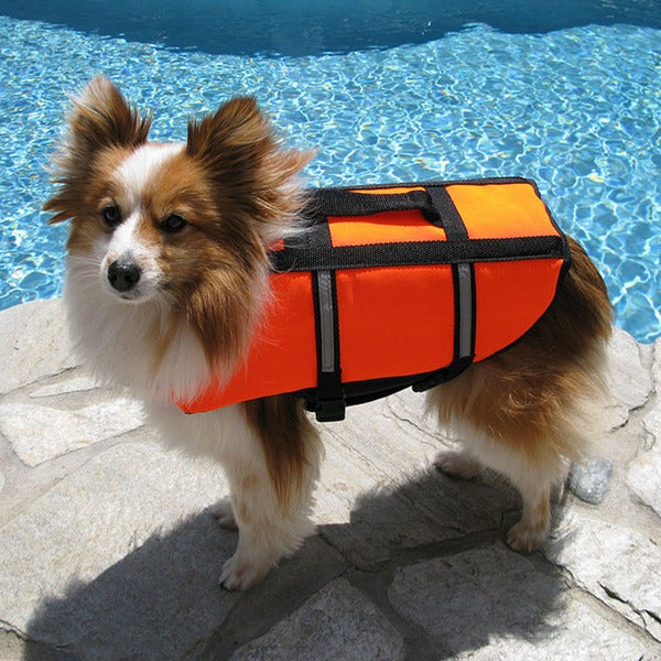 Poolmaster Doggie Swim Vest