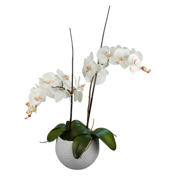 Eloise Silk Floral Arrangement with White Phalaenopsis Orchids, Orchid Leaves and Bamboo in White Vase