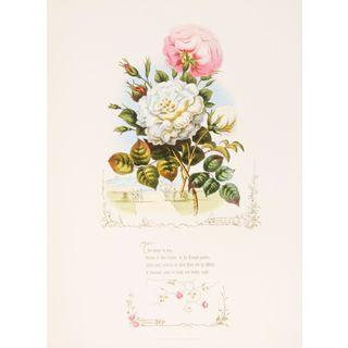 Shakespeareâs Flowers, Roses