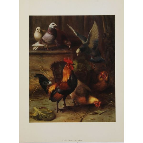 Roosters & Pigeons, E. Hunt