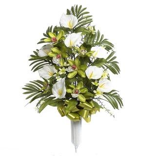 Sage & Co 36-inch Mixed Orchid Arrangement