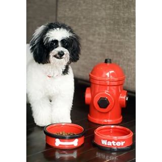 AKC Red Fire Hydrant 4 Piece Bowl and Jar Set