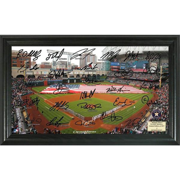 Houston Astros Signature Field
