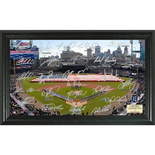 Detroit Tigers Signature Field