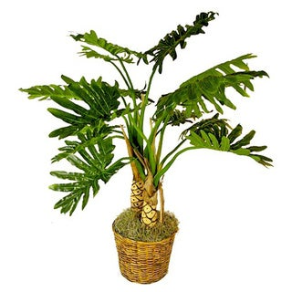 Silk Monstera Palm Tree in Rattan Wicker Basket