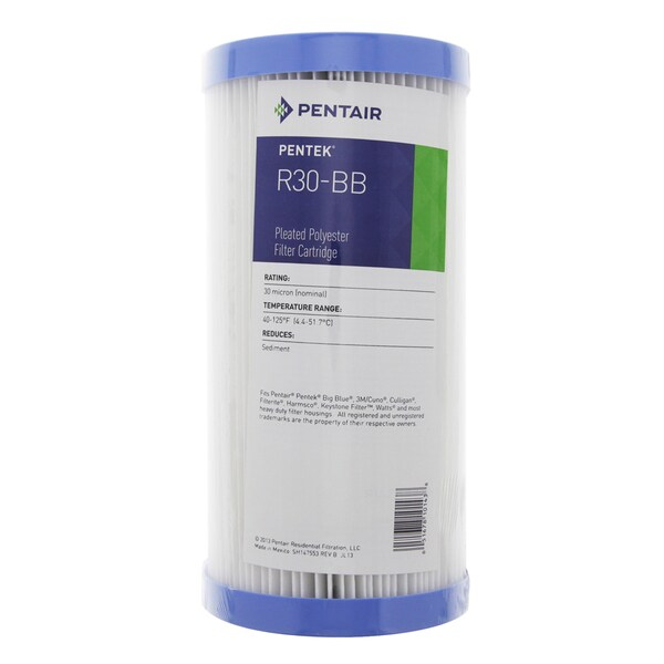 Pentek R30-BB Pleated Polyester Water Filters (9.75-inch x 4.5-inch) 15402670
